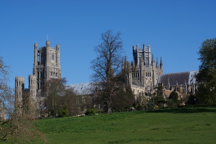 Ely Cathedral from across the meadows