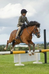 Show Jumping #4
