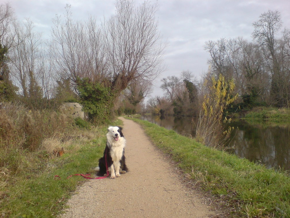 Jake posing on the Cam tow path